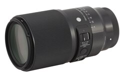 Sigma A 105 mm f/2.8 DG DN Macro - lens review